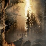 the-hobbit-banner-poster_07