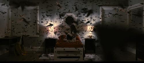 Moths. Moths everywhere.