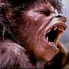 3_11_werewolf