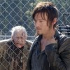 walking dead sorrowful life banner