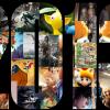 bestgamesof2013
