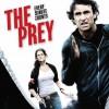 prey_feat