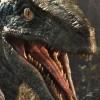Raptor_bro_feat