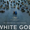 white_god_2014_movie-1440x900