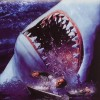 Shark Attack 2 feature