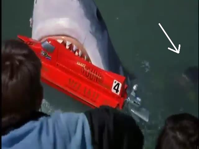 The man behind the sharky curtain