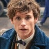 Eddie-Redmayne-in-Fantastic-Beasts-and-Where-to-Find-Them1